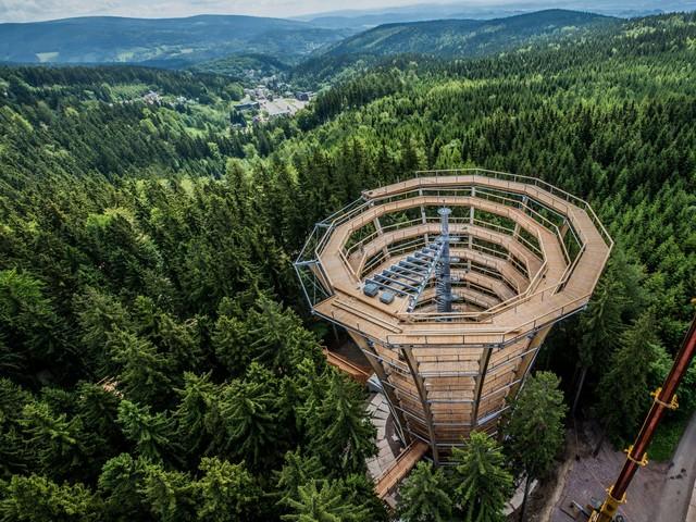 Ścieżka pośród koron drzew. Niesamowita konstrukcja tuż przy polskiej granicy