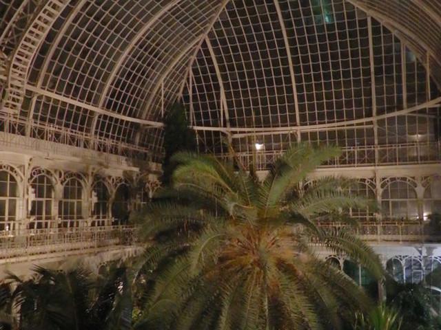 Sekrety palmiarni wiedeńskiej poznasz w nocy z kieliszkiem w ręku