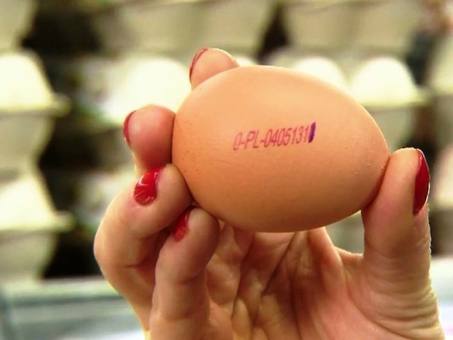 Skażone jajka z polskich ferm. Poznasz je po kodzie na skorupce