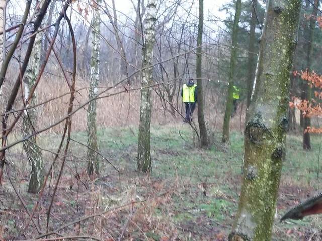 Grzybiarz zgubił się w lesie. Postawił na nogi policję