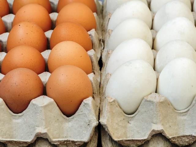TVN zmanipulował materiał o jajkach? Tak twierdzi Oldar. A telewizja pokazuje kolejny materiał