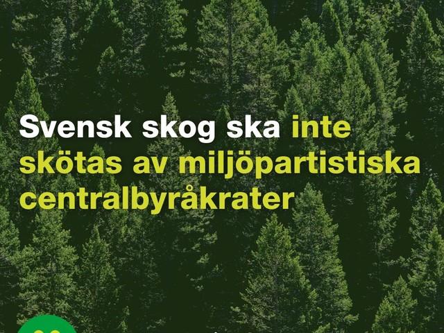 Svensk skog ska inte skötas av miljöpartistiska centralbyråkrater