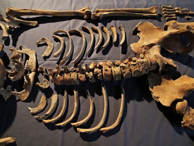 Massgrav visar på digerdödens spridning