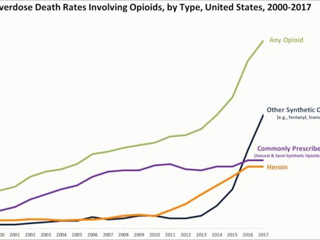 Vinstdriven privat sjukvård bakom opioidkrisen i USA