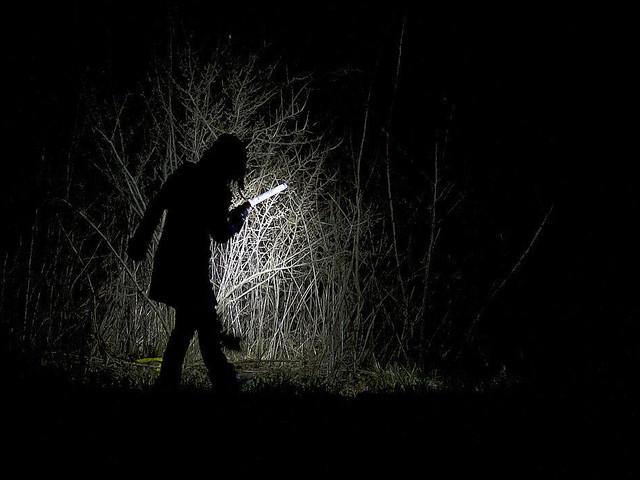 30 år gammalt flickmord löst med dna-teknik