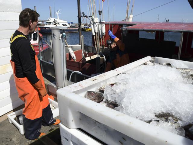 Nordisk fiskestrid om Östersjön