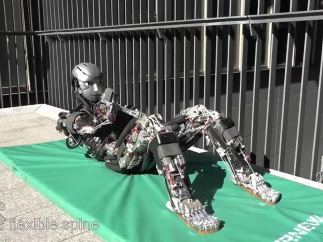 Veckans videor: Donald Trump-robot, RealDolls sexrobot och Coyote III