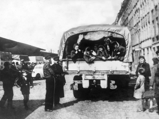 Vittnesmål från Förintelsen läggs ut på nätet