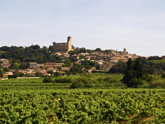 En exklusiv raritet I Rhônedalen: vit Châteauneuf-du-Pape