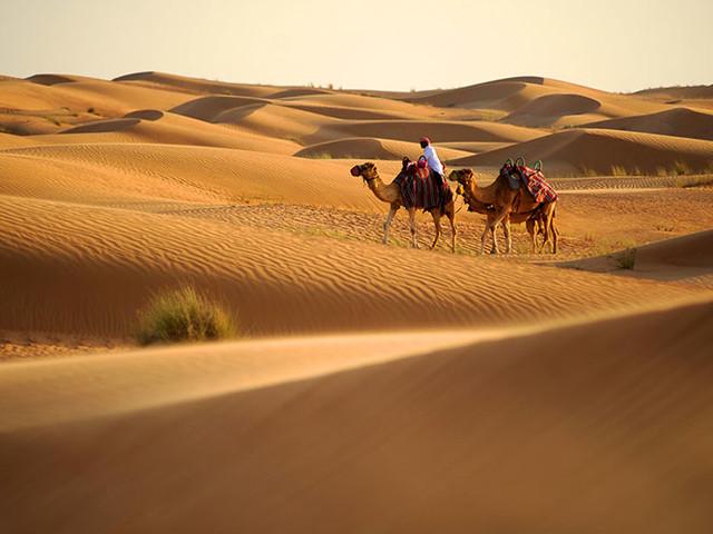 Byrån som ska få fler nordbor att resa till Dubai