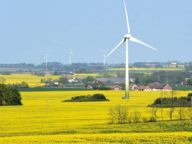Swedbankchefer efterlyser grön finanspolitik