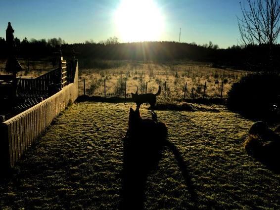 Minusgrader och sol…