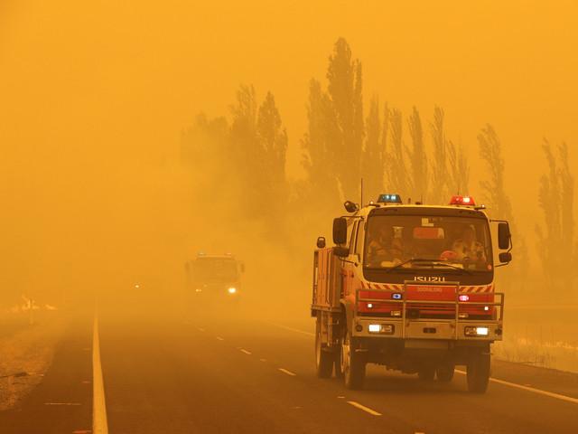 Tre av fyra australier påverkade av bränderna