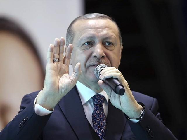 Erdogan tar stöd av nationalister