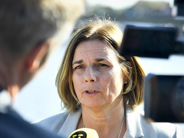 Miljöpartiet får igenom kritiserad reform