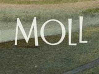 """Elisabeth Rynell """"Moll"""""""
