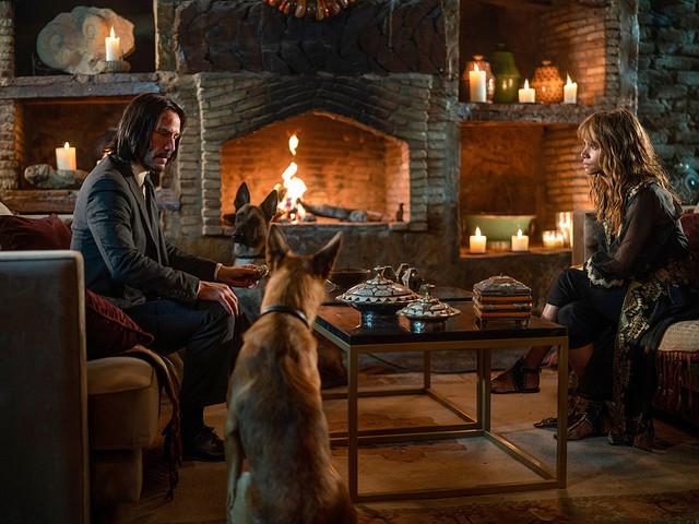 Ny John Wick 3-trailer med hundfokus