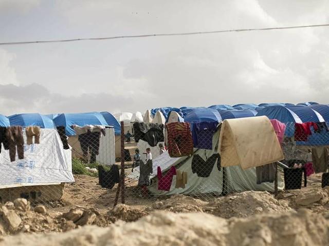 Partier pressar regeringen om IS-barnen