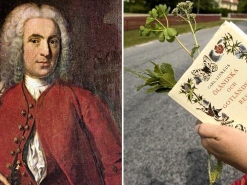 Sverige vill se Carl von Linné som världsarv