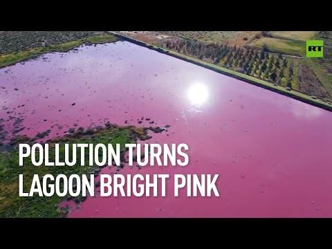 Föroreningar färgar sjö rosa i Argentina