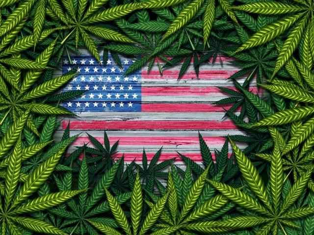 Horizons ETFs to Launch World's First U.S.-Focused Marijuana ETF