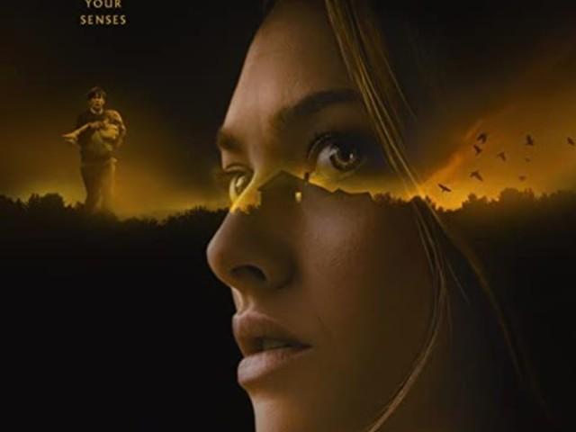 Film: Things heard & seen (2021)