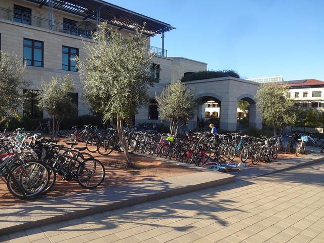 Cyklar i solskenet på Stanforduniversitetet