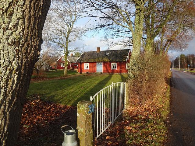 Färgsprakande Falkenberg på hösten i ett nötskal