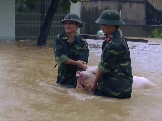 Många döda i oväder i Vietnam