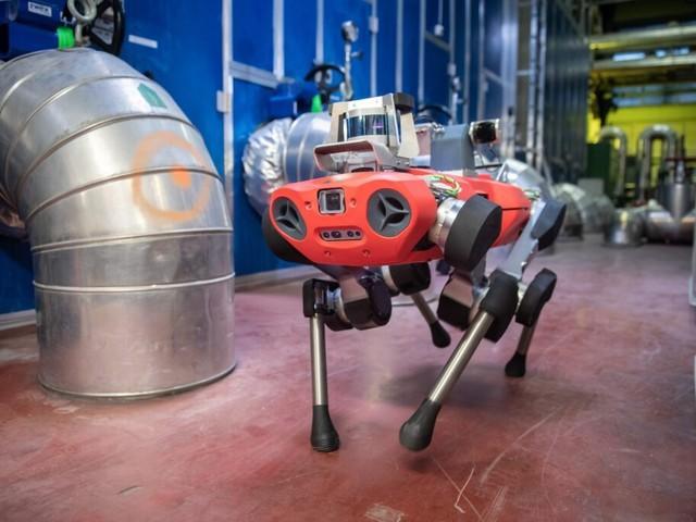 Vattentäta robothunden ANYmal C tar upp kampen med SpotMini