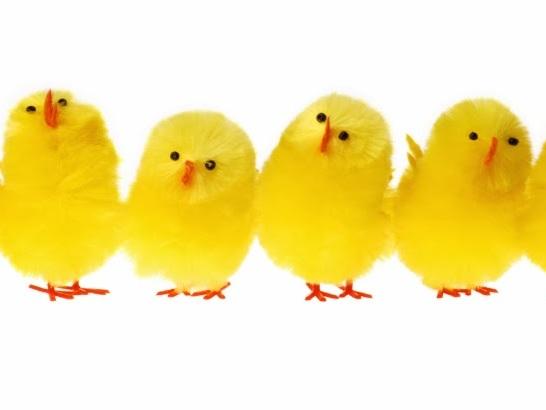 Från blåkullajazz till kycklingpolka