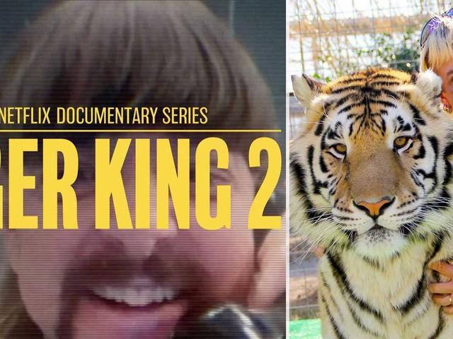 """Netflix besked om """"Tiger King"""""""