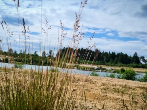"""Ortsborna oroliga när deras sjö ska säljas: """"Rädd att det ska spärras av"""""""