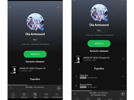 Spotify anpassad för iPhone X