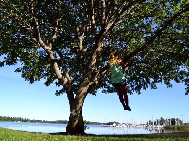 Tips på träningspass utomhus i midsommar