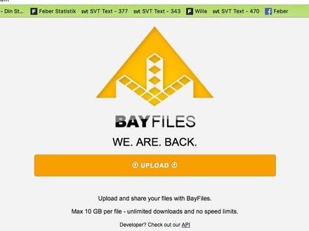 Molntjänsten Bayfiles gör comeback
