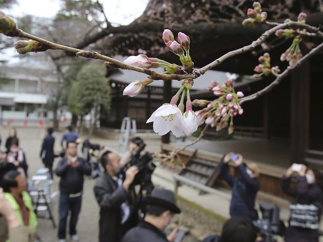 Turister strömmar till Japan
