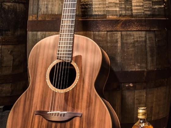 Önskelistan : Bushmills gitarr