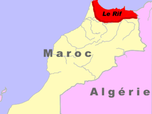 Mocro maffia – ett av de mäktigaste kriminella nätverken
