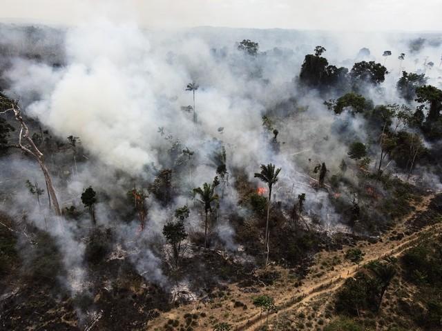 Antalet skogsbränder i Amazonas ökar stort