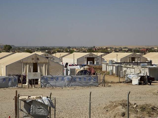 Irak vill utvisa 500 IS-fruar