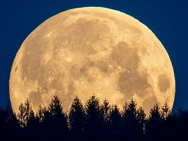 A rare harvest micromoon will rise on Friday the 13th. Here's what that means and why each full moon has its own name.