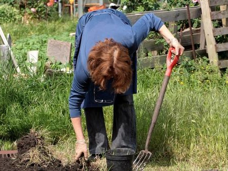 Gardening for just 10 minutes a week can cut risk of death, study suggests
