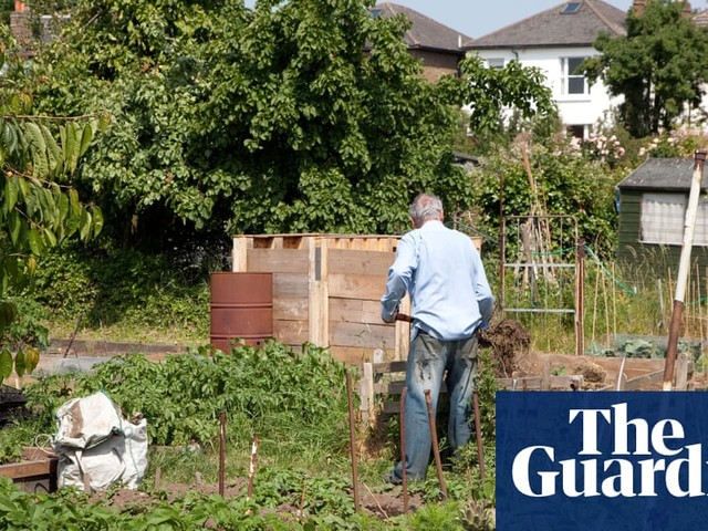 How can I tend my allotment without visiting every day?