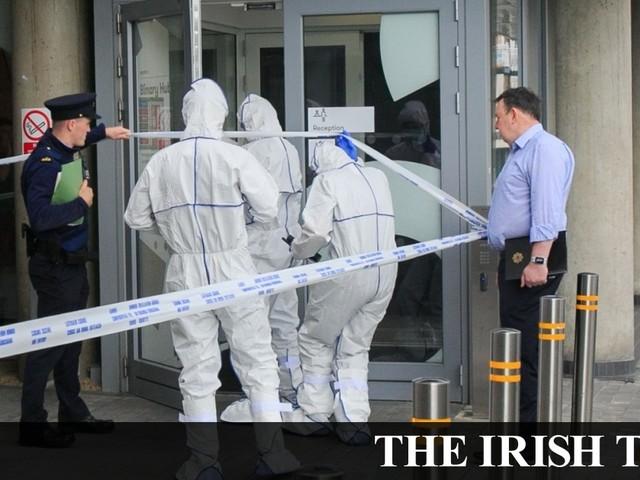 Victim of fatal Dublin stabbing named as Skaidrite Valdgeima