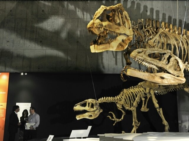 Were dinosaurs killed off by asteroid or volcanoes? It's complicated