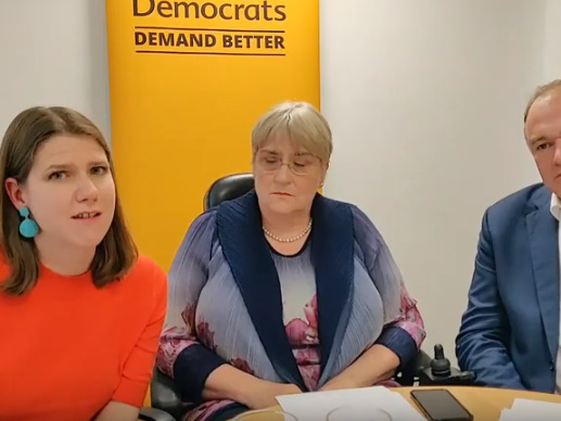 Lib Dem leadership candidates: 'Austerity was right and Labour would have done it too'