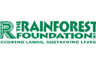 Spotlight: The Rainforest Foundation's Celebrity Supporters