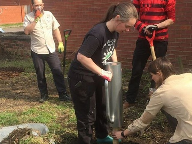 From fly-tipping to fruit trees - disused patch of land in Levenshulme transformed into community orchard