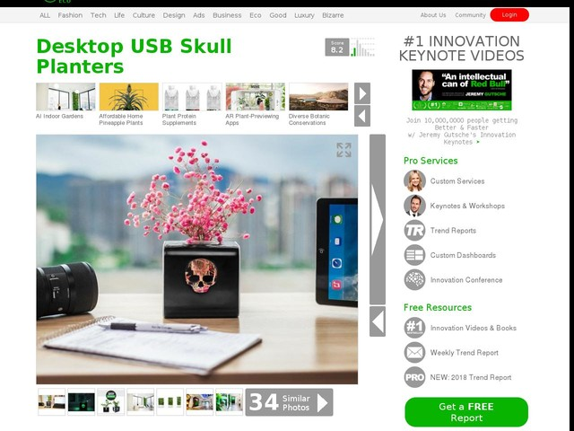 Desktop USB Skull Planters - This USB Skull Planter Offers a Clean, Contemporary Look (TrendHunter.com)